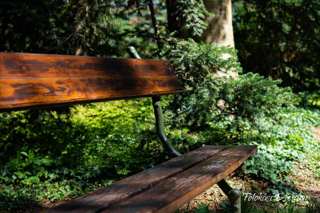 Beitragsbild Gemeinnützigkeit - Parkbank unter einem Baum
